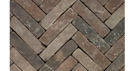 Клинкерная тротуарная брусчатка ручной формовки Penter Pastorale mix tumbled, 200х50х65 мм фото